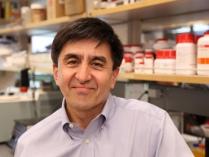 Shoukhrat Mitalipov, of Oregon Health & Science University