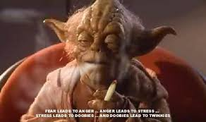 Yoda smoking pot